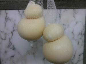 scamorzette-ciccino